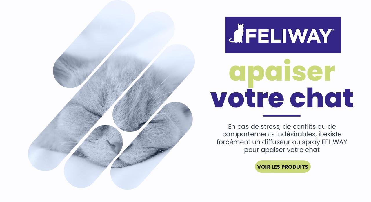 Avec les produits FELIWAY, apaiser votre chat dans toutes les circonstances de sa vie