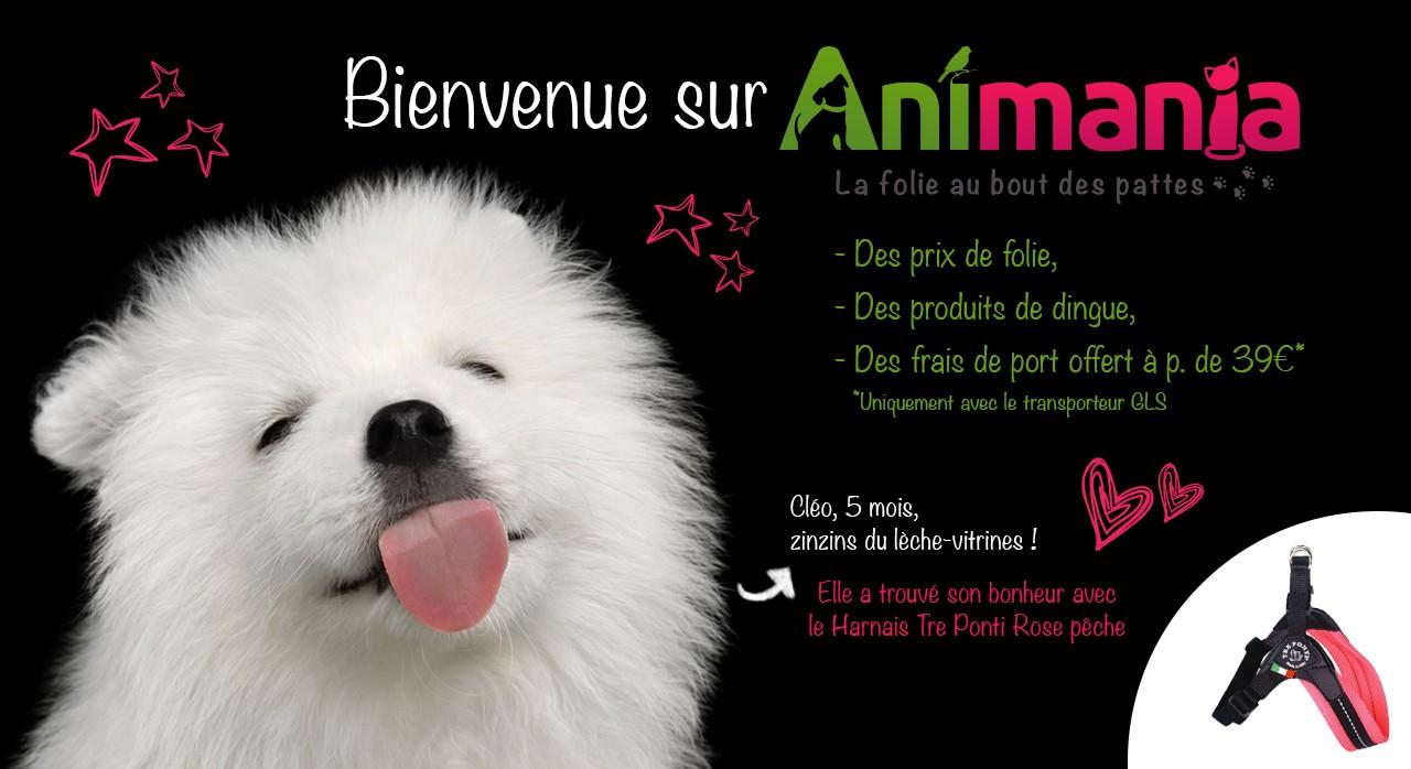 Animania, le futur site pour les aliments et les accessoires pour chien et chat qui va vous rendre gaga !