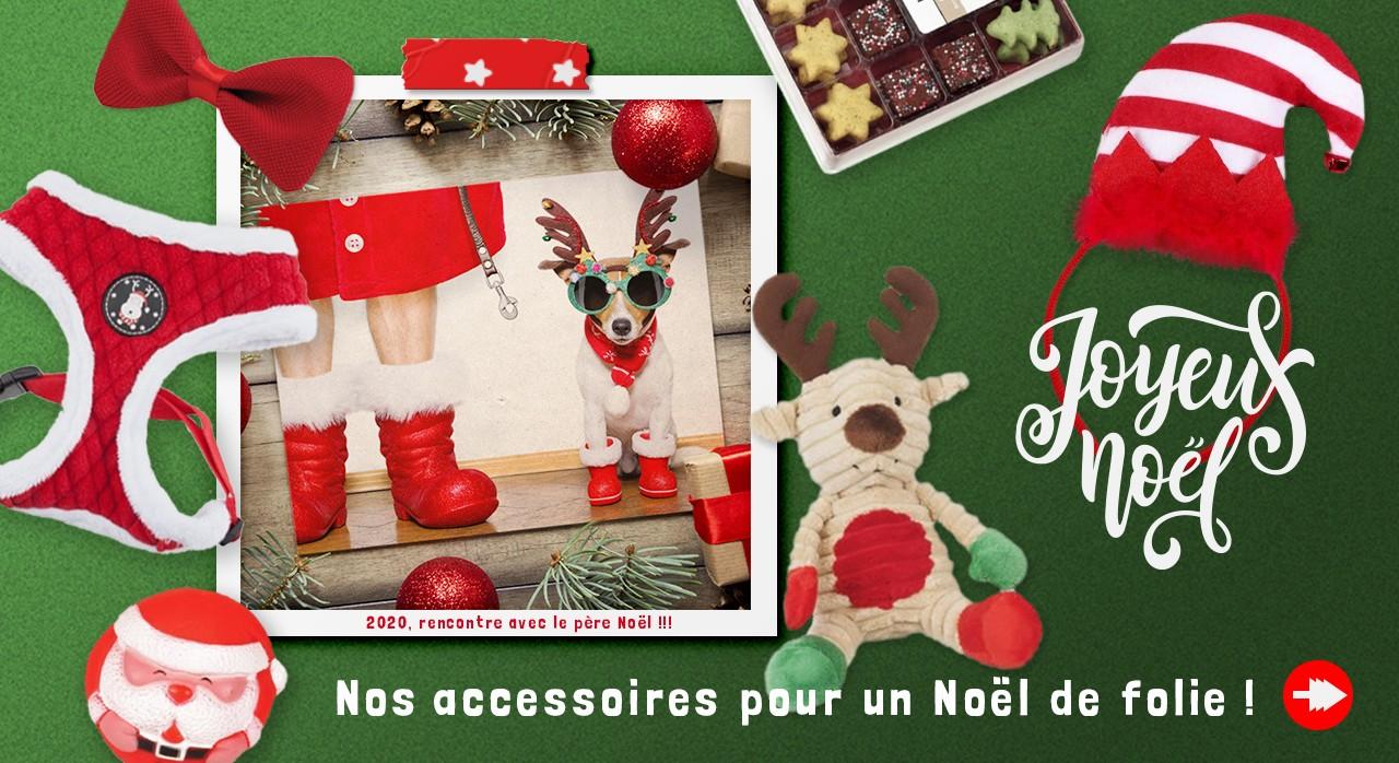 Découvrez vites nos friandises de Noël, nos déguisements et jouet pour un Noël de Folie !