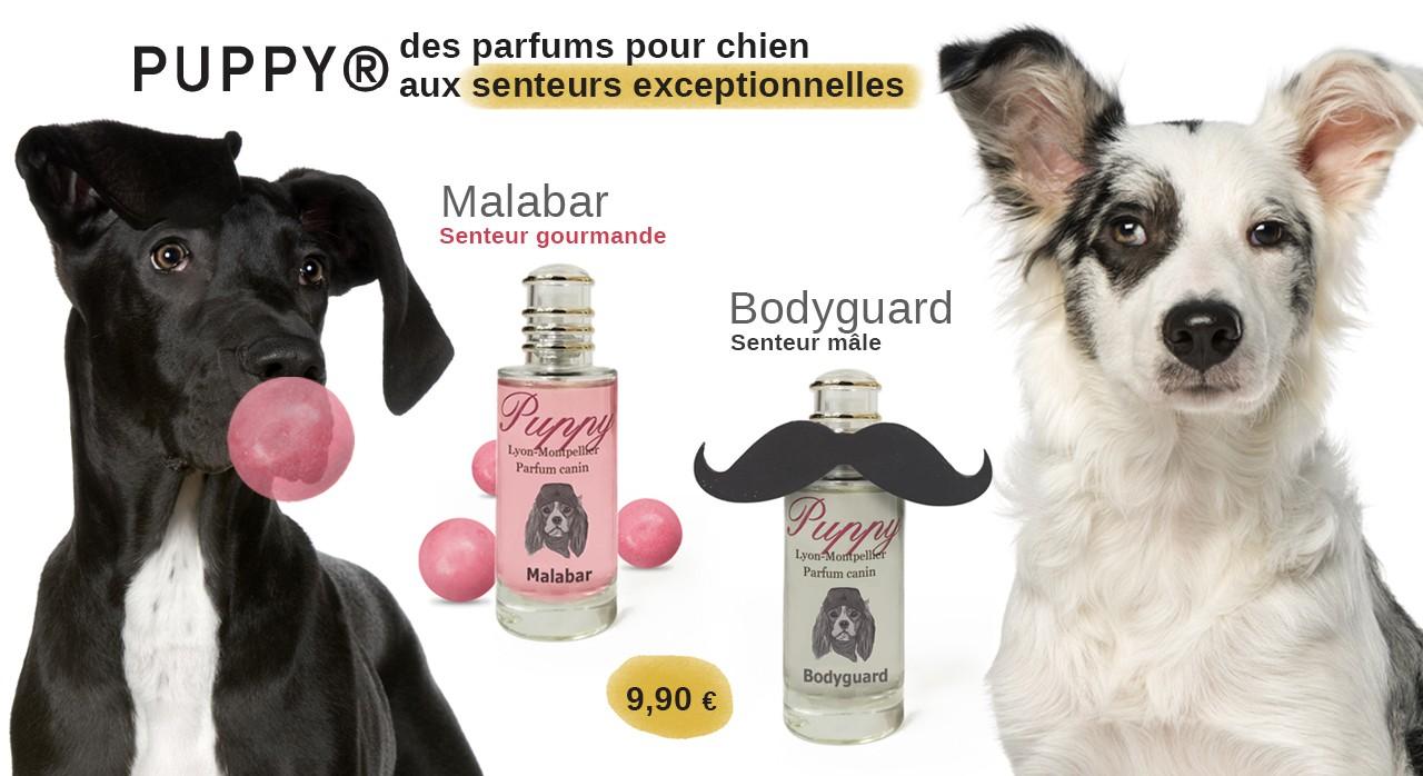Les parfums pour chien de Puppy, les parfums préférés des fines truffes